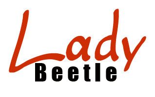 Lady Beetle Business Solutions - Gold Coast Accountants
